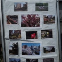 expo.photos du quartier P-A.M (5)